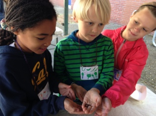 Students showing off the worms they have found
